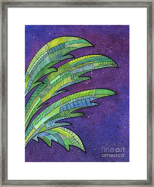Palms Against The Night Sky Framed Print