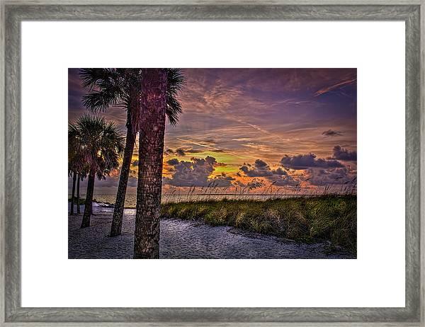 Palms Down To The Beach Framed Print