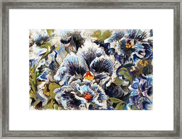 Pansy Patterns Framed Print