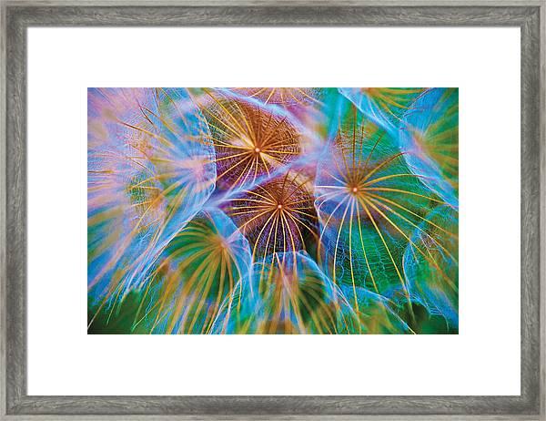 Parachute Time Framed Print