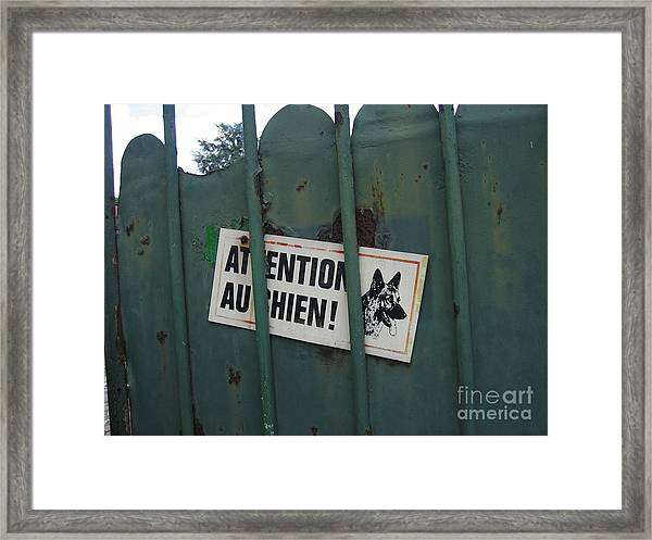 Paris - Farm Dog Framed Print