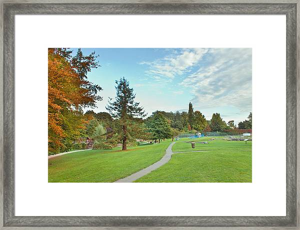 Park In Autumn Framed Print