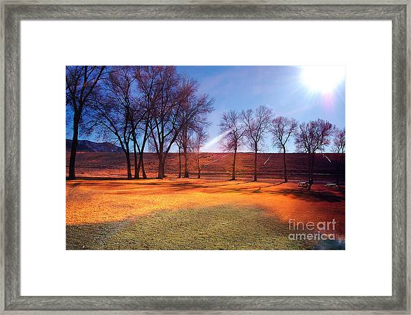 Park In Mcgill Near Ely Nv In The Evening Hours Framed Print