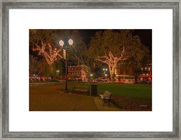 Park Scene Framed Print