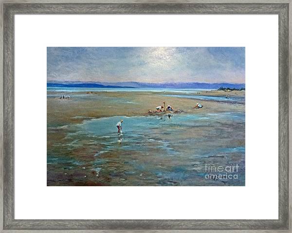 Parksville Beach Framed Print