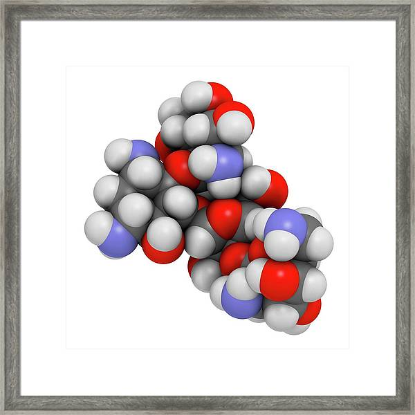 Paromomycin Aminoglycoside Antibiotic Framed Print by Molekuul