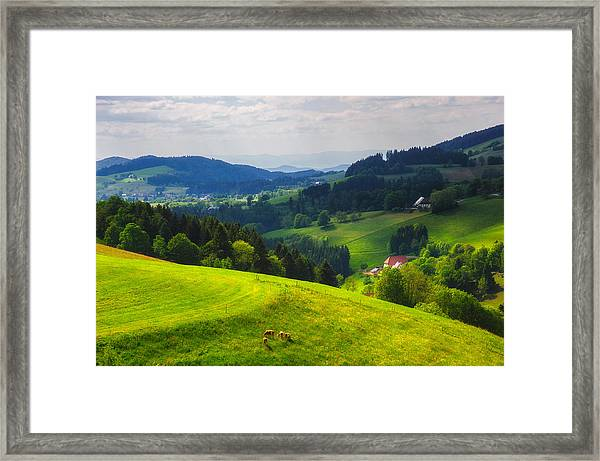 Partly Sunny At Black Forest Framed Print