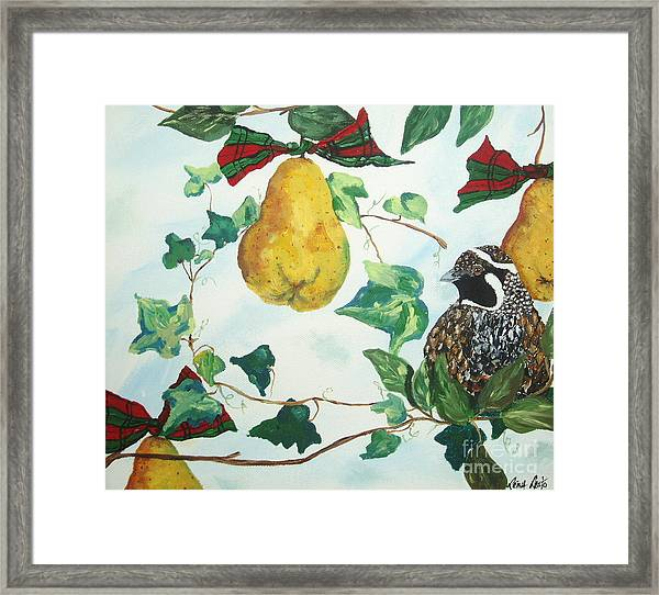 Partridge And  Pears  Framed Print