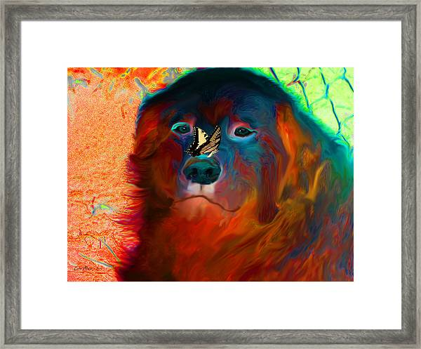 Party Pyrenees Framed Print