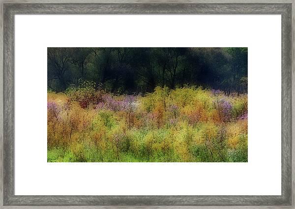 Pastel Field Framed Print