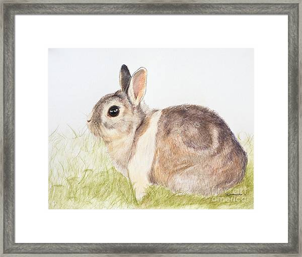 Pastel Pet Rabbit Framed Print
