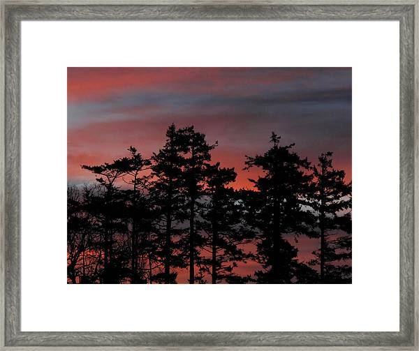 Pastel Silhouettes Framed Print
