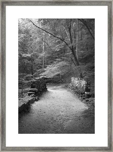 Path In Black And White Framed Print