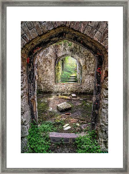 Path Less Travelled Framed Print