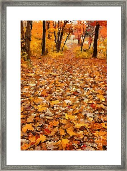 Path Of Fallen Leaves Framed Print