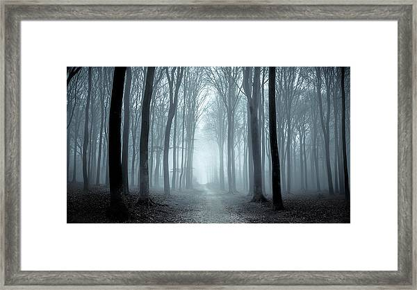 Path Through A Misty Forest During A Foggy Winter Day Framed Print by Sjo