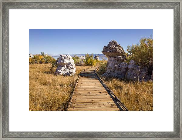 Framed Print featuring the photograph Path To Mono Lake by Priya Ghose