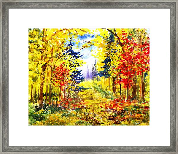 Path To The Fall Framed Print