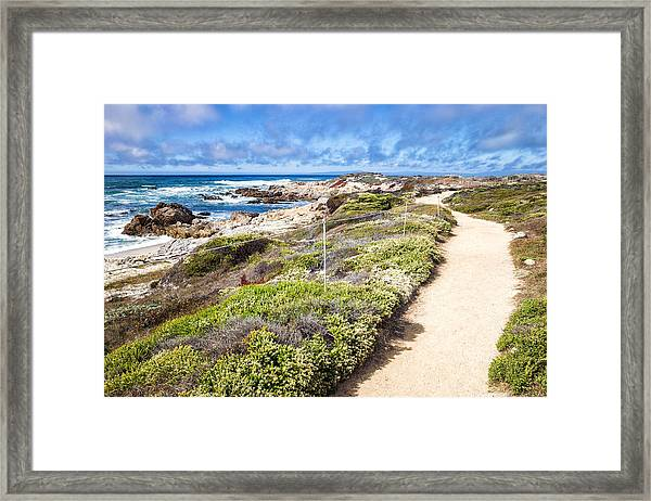 Framed Print featuring the photograph Pathway At Asilomar State Beach by Priya Ghose