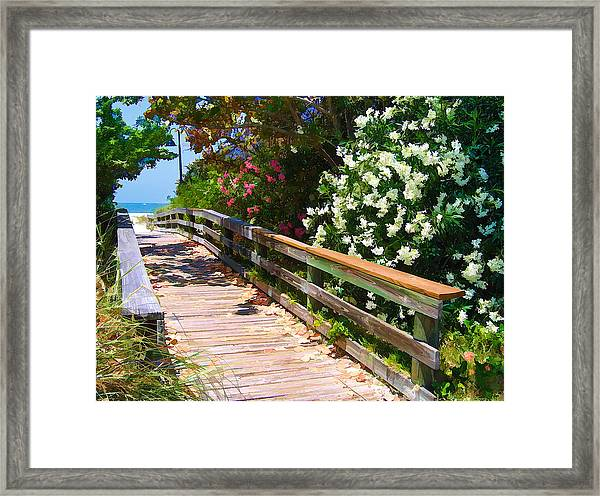 Pathway To Beach Framed Print