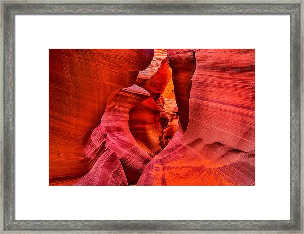 Pathway To Beauty Framed Print