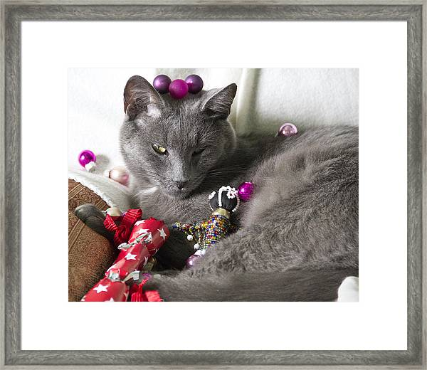 Patience Framed Print by Debbie Cundy