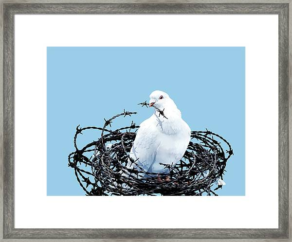 Peace Dove Framed Print by Smetek