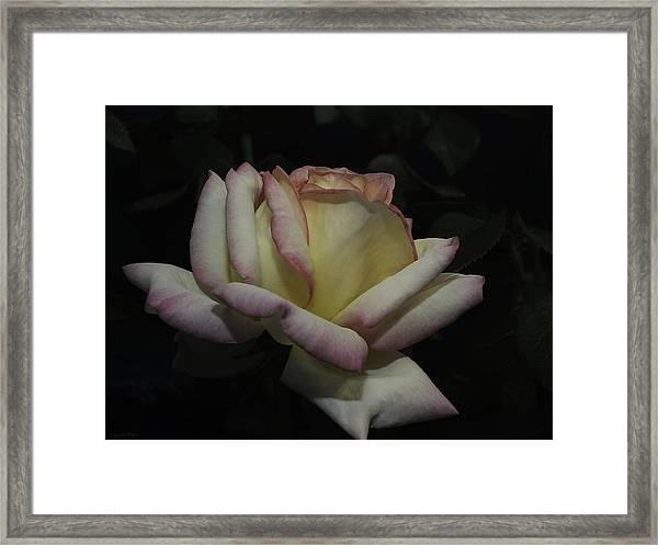 Peace To You And Yours Framed Print