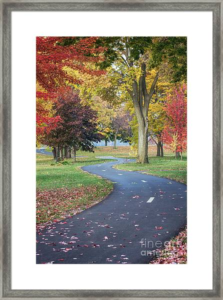 Peaceful Autumn Path Winona Photo Framed Print by Kari Yearous