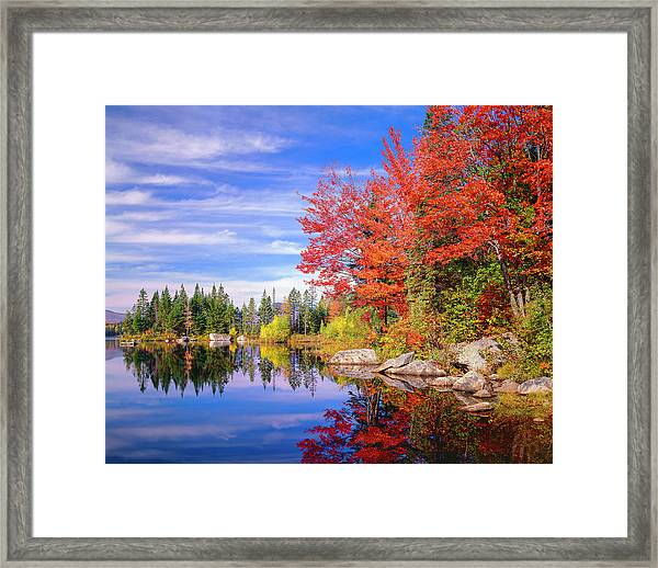 Peaceful Colorful Autumn Fall Foliage Framed Print by Dszc