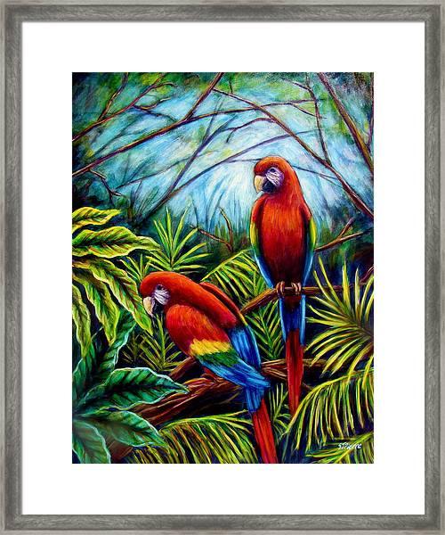 Peaceful Parrots Framed Print