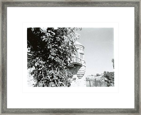 Peaceful Place 2 Framed Print