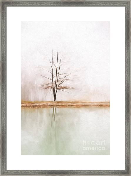 Peacefulness Framed Print