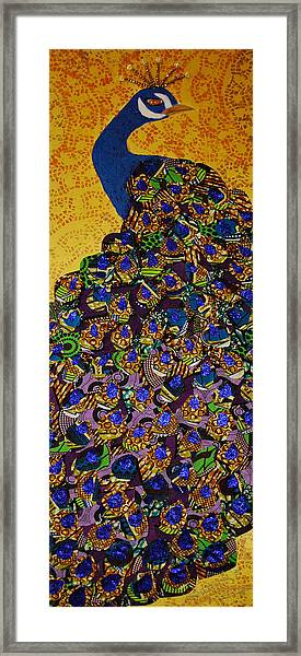 Peacock Blue Framed Print