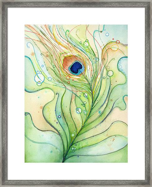 Peacock Feather Watercolor Framed Print