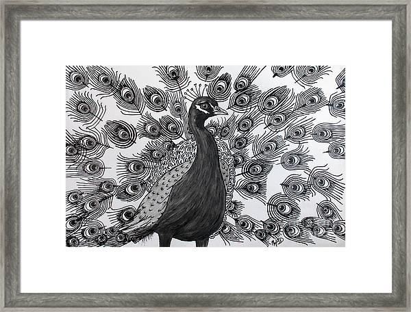 Peacock Walk Framed Print