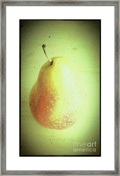 Summer Pear Framed Print