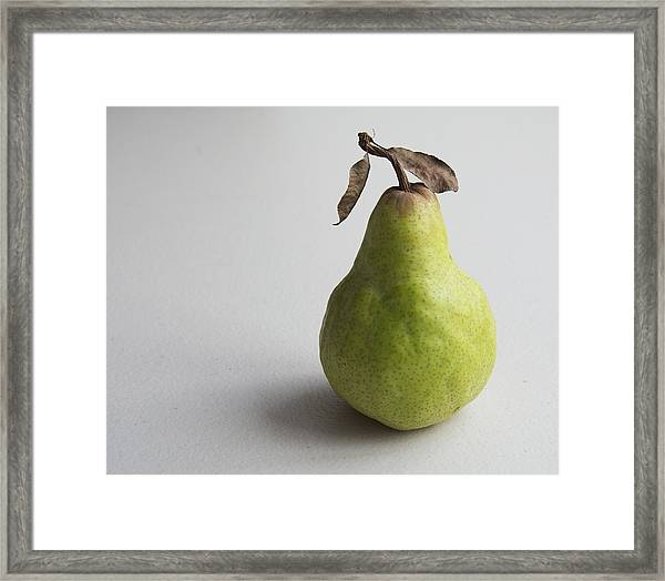 Pear Still Life Protrait Framed Print