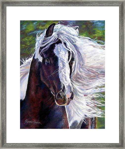 Pearlie King Gypsy Vanner Stallion Framed Print