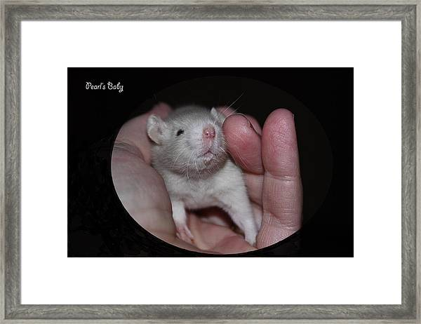 Pearl's Baby Framed Print