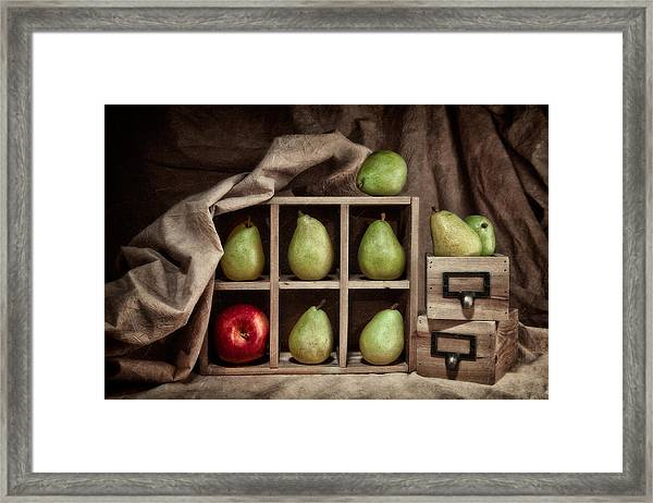 Pears On Display Still Life Framed Print