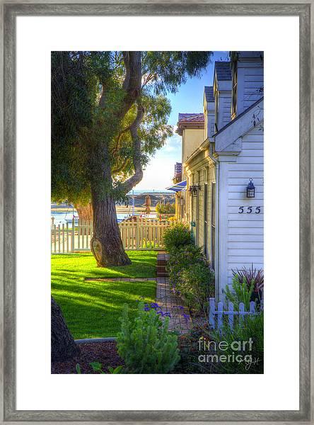 Peek-a-boo View Framed Print