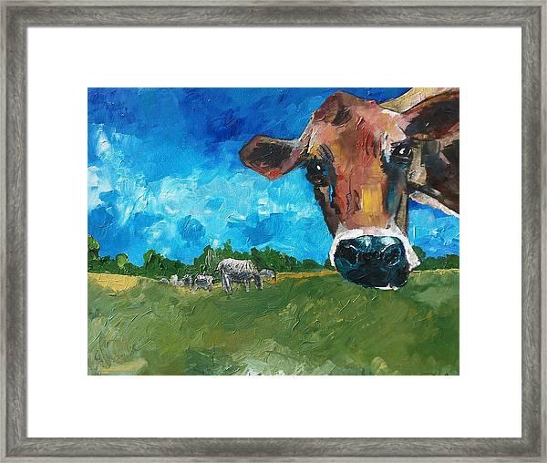 Peeping Bessie Framed Print