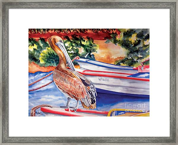Pelican On A Ponga Framed Print