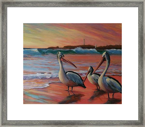 Pelican Sunset Framed Print