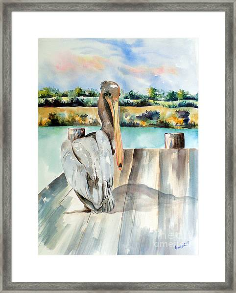 Pelican With An Attitude Framed Print