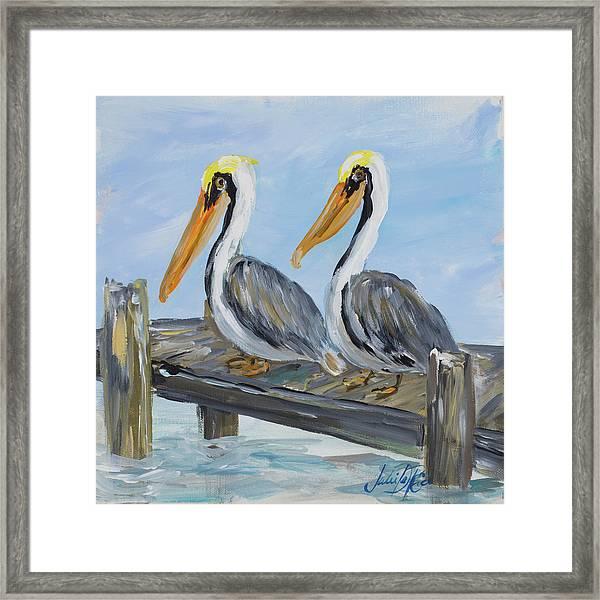 Pelicans On Deck Framed Print