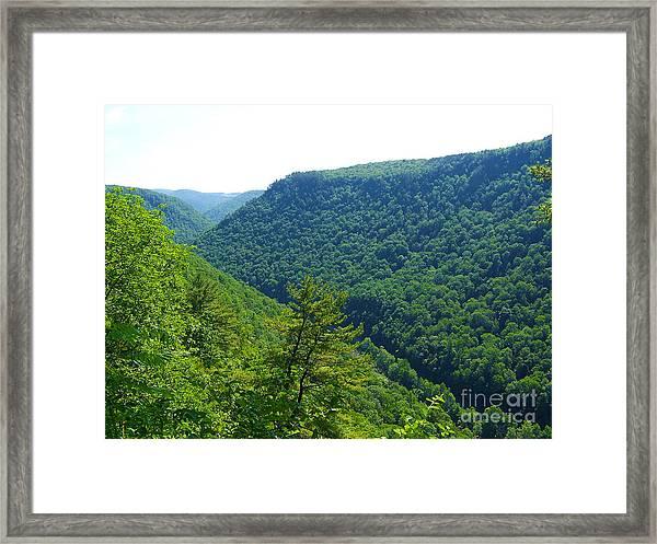 Pennsylvania Grand Canyon 1 Framed Print