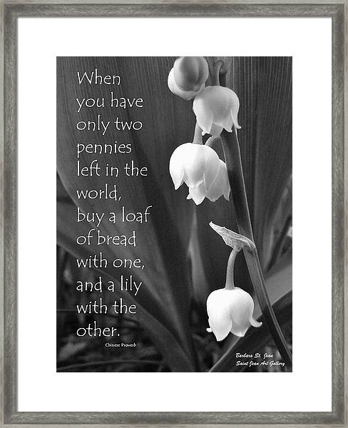 Penny Lily Framed Print