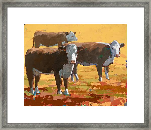 People Like Cows #9 Framed Print by David Palmer
